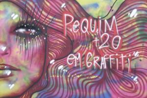 No Rio de Janeiro, exposição Pequim+20 em Graffiti marca o Dia Internacional pela Eliminação da Violência contra as Mulheres/
