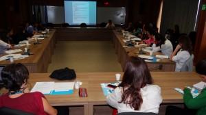 ONU Brasil faz oficina de planejamento para a Década Internacional dos Afrodescendentes /