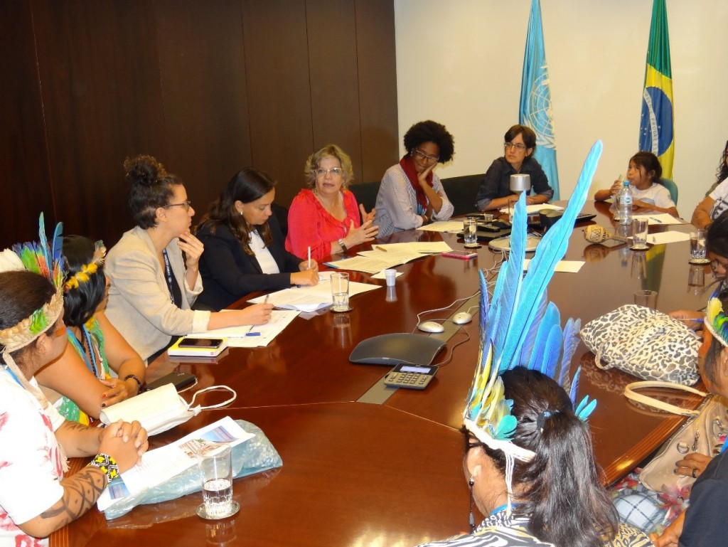 Mulheres indígenas buscam apoio da ONU Brasil para encontro Aty Guasu e em defesa de terras tradicionais/noticias direitosdasmulheres