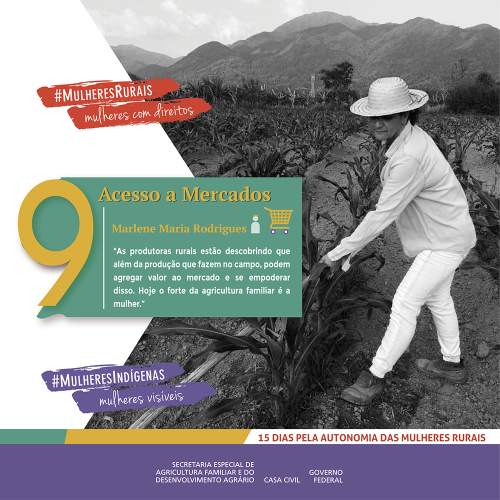 Acesso a mercados: Empoderamento das mulheres da Agro Verde/noticias mulheres rurais empoderamento economico