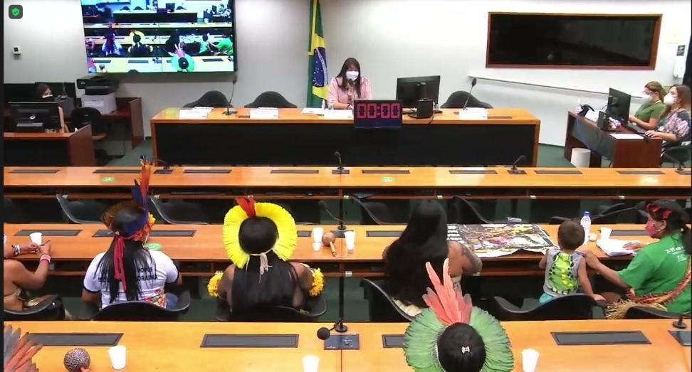 Em audiência pública na Câmara dos Deputados, ONU Mulheres defende direito de mulheres e meninas de viver sem violência/mulheres indigenas direitos humanos direitosdasmulheres defensoras de direitos humanos